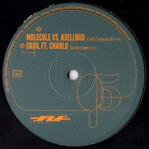 FLF Soundsystem 05