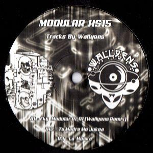 Modular HS 15